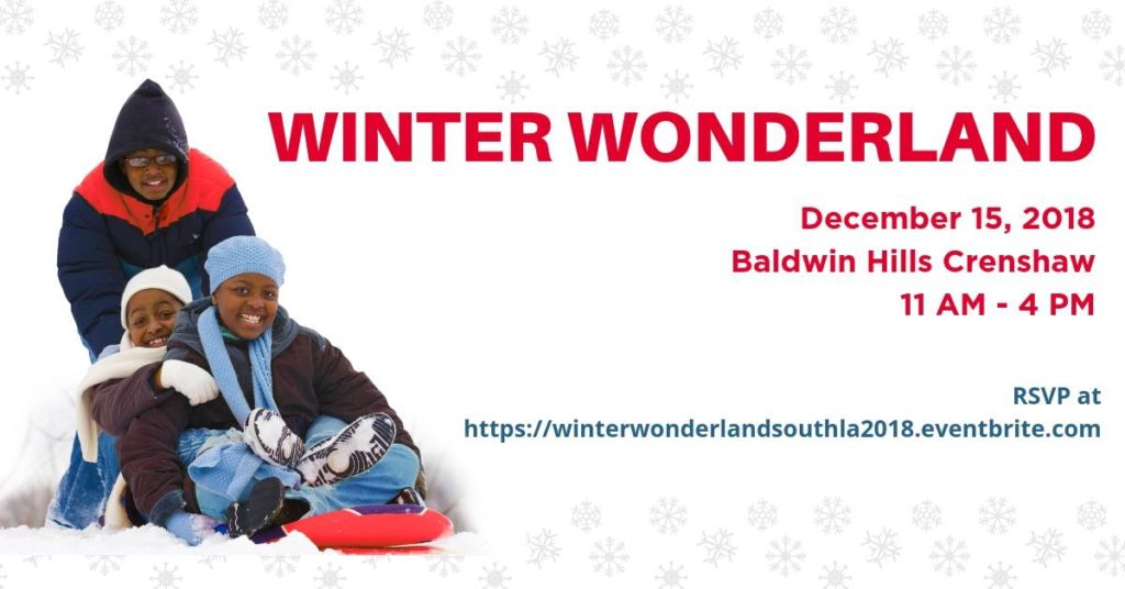 Winter Wonderland Flyer