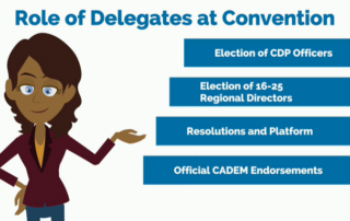 role of delegates at convention